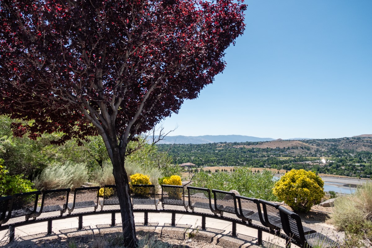 view with benches and a cherry tree overlooking Reno, Nevada